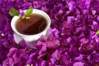 9054042-una-taza-de-te-rodeado-de-flores-con-espacio-de-copia
