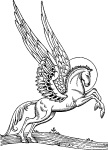 WINGED HORSE REARING