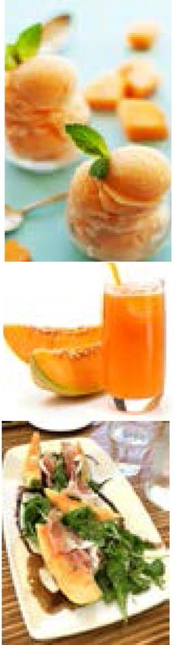 melon 4